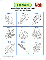 When the leaves are falling, it's the perfect time to take a walk with your kids and see how many leaves you can find for this Leaf Match game!