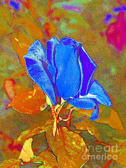 """Blue rose"" by Magdalen DgArtStudio  Available on Fineartamerica"