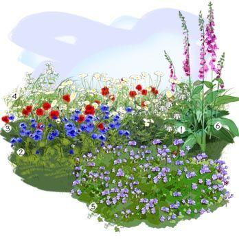 projet am nagement jardin prairie fleurie am nagement jardin pinterest. Black Bedroom Furniture Sets. Home Design Ideas