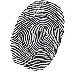 Illustrierter Fingerabdruck