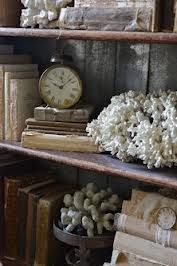Rustic beach house decor - coral adds instant beach to your decor!