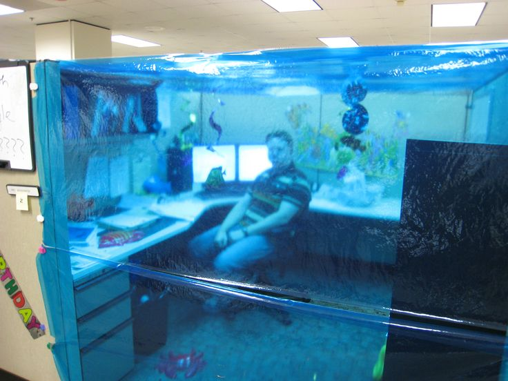 40 best Cubicle Pranks images on Pinterest Cubicles Pranks and