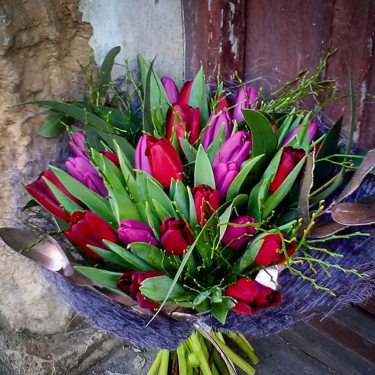 "4 aprecieri, 1 comentarii - Floraria Dorothy's (@florariadorothys) pe Instagram: ""Tulip season on!! #spring #cluj #clujnapoca #clujcenter #clujlife #florariecluj #lifeincluj…"""