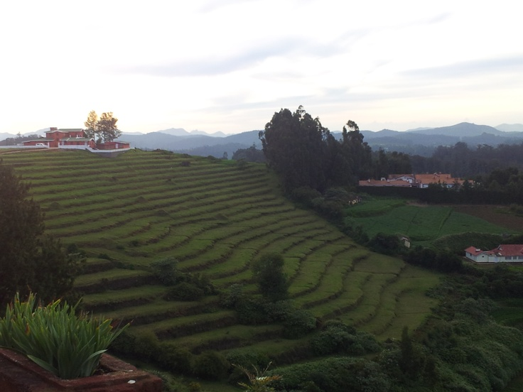 Ooty is one of  the best destinations and most visited by tourist. It is also a paradise for trekking enthusiast and campers.