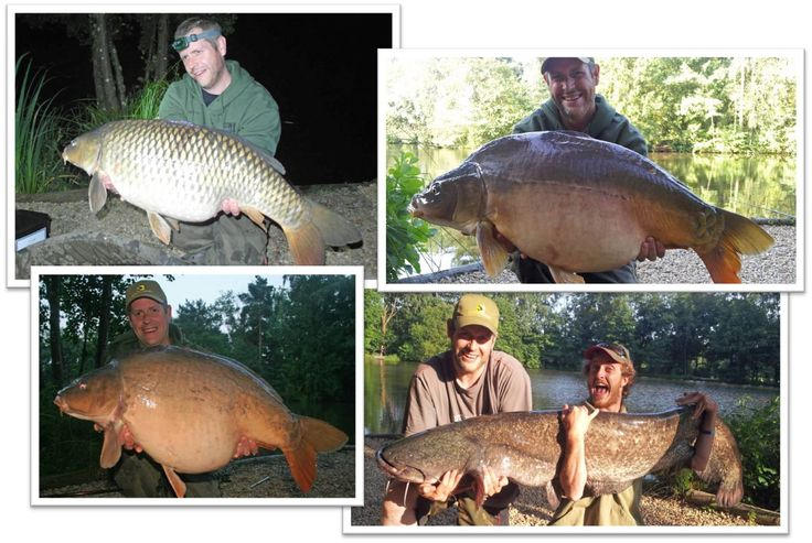 James with some of his best catches in July 2013. #carpfishing