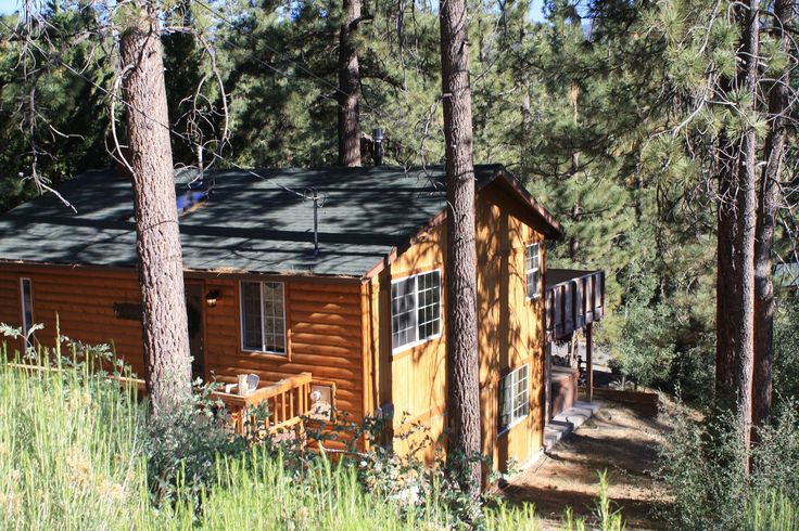 17 Best Images About Big Bear Cabin On Pinterest Trees