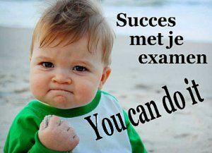 Afbeeldingsresultaat voor succes met de examens