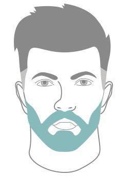 Bien tailler sa barbe Nous arrivons à l'étape fatidique : comment bien tailler sa barbe ? Comme vous le savez sans doute, on ne taille pas une barbe de 3 jours comme on taille une barbe longue.