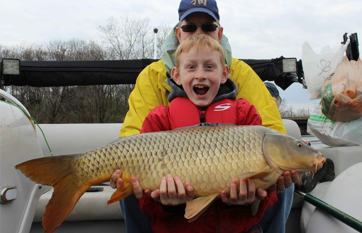 17 best images about carp fishing on pinterest feed corn for Fishing with bread