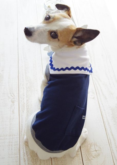 Dark blue with Light blue stripped tank and White sailor collar