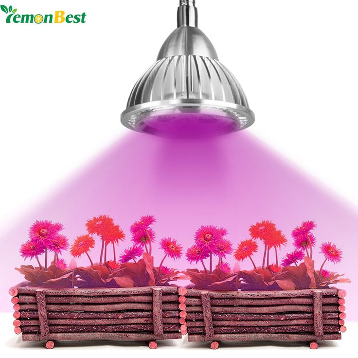LemonBest 5W Clip Hydroponic Plant Growing Lights 5 LEDs LED Grow Light Bulb with Power Switch for Garden Greenhouse AC 85~265V