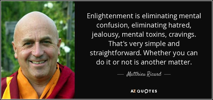 Enlightenment is eliminating mental confusion, eliminating hatred, jealousy, mental toxins, cravings. That's very simple and straightforward. Whether you can do it or not is another matter.