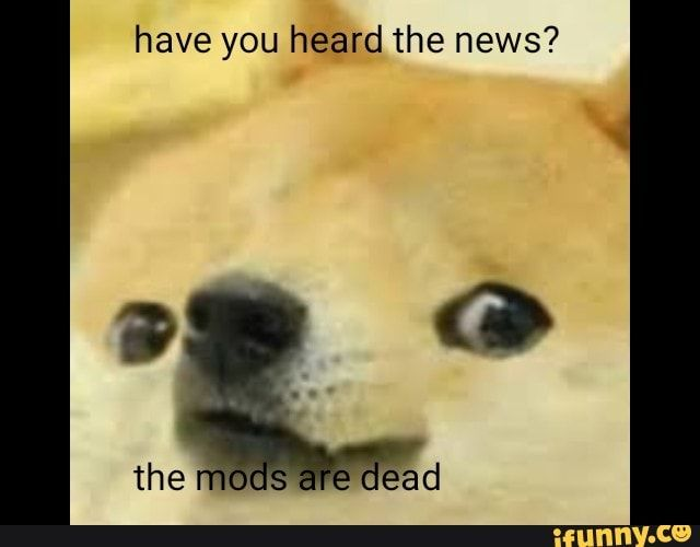 Have You Heard The News Ifunny Stupid Memes Funny Memes Memes