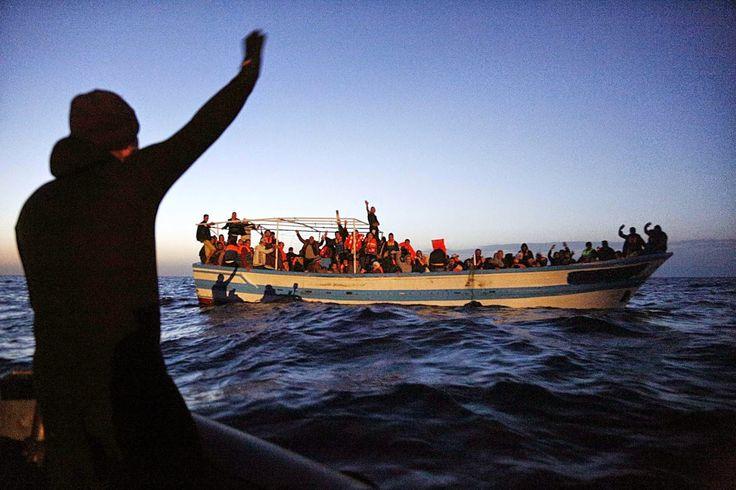 Disconnessa Sempre: L'affaire immigrazione..