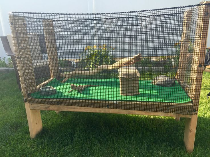 Outdoor bearded dragon cage for spike