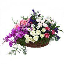 Bright and Smiley - EasyFlowers  Online Flowers  https://www.easyflowers.co.in/delivery-flowers-to-bangalore/