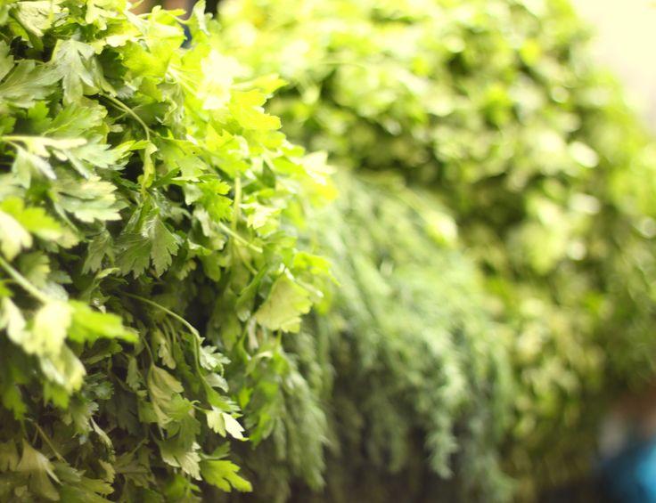 Fresh parsley in Mahne Yehuda open market - Jeruaslem, Israel