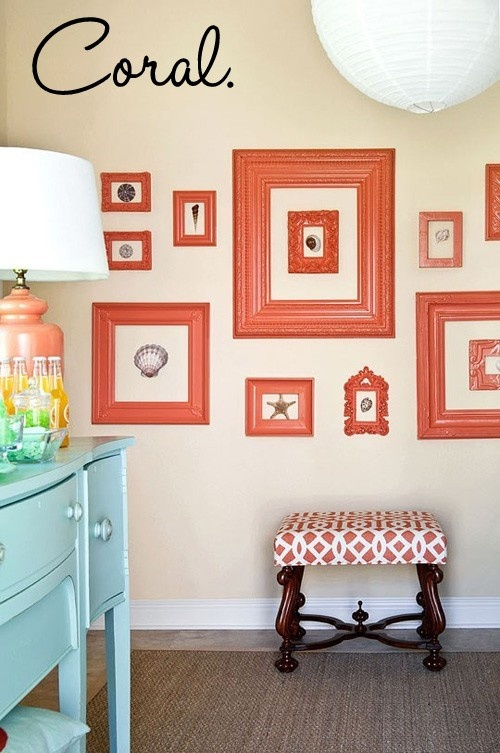 Framed seashells: Idea, Coral, Color Schemes, Color Combos, Paintings Frames, Empty Frames, Galleries Wall, Guest Rooms, Pictures Frames