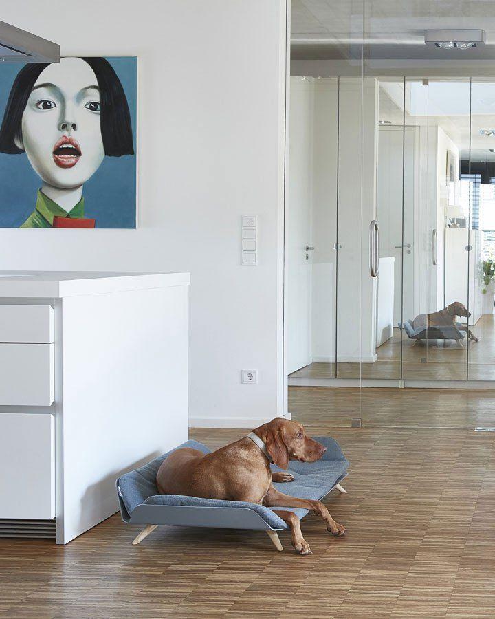 Letto Daybed hundeseng i eksklusivt design - Petlux