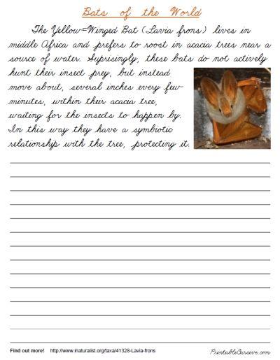 23 best handwriting practice images on pinterest teaching handwriting handwriting practice. Black Bedroom Furniture Sets. Home Design Ideas
