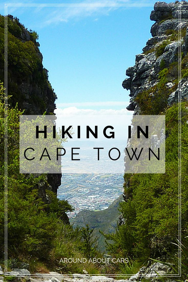 Cape Town offers a variety of hiking trails and climbing routes. Here you do not even have to travel far, because right on Table Mountain, Lions Head and Signal Hill are numerous hiking paths.Here is definitely something for everyone.