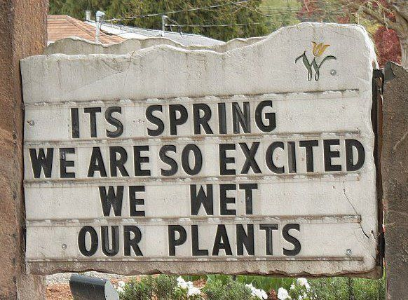 hahaha!: Shops Signs, Funny Signs, Quote, Giggl, Gardens Signs, Funny Stuff, Spring, Flowers Shops, Gardens Humor