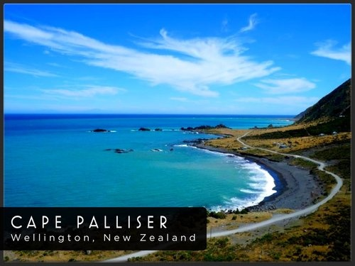 Wellington Travel photo of Cape Palliser - Attraction - Gogobot