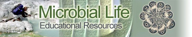 Microbial Life  Educational Resources
