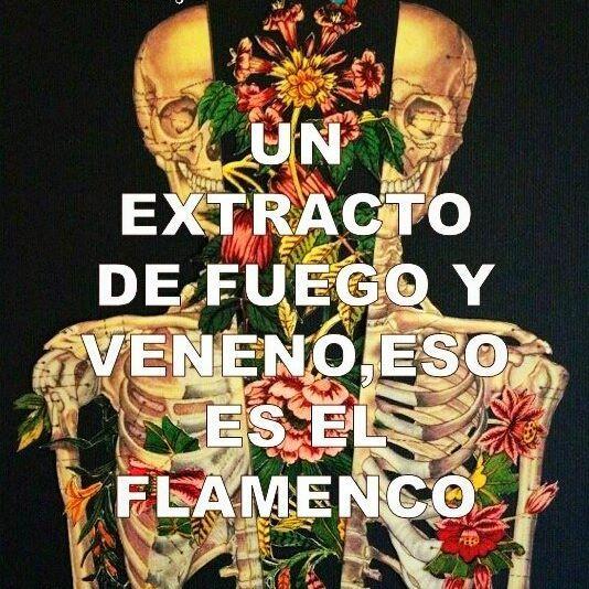 ❇ Y para ti que es el flamenco?  #yosoytomaquetoma