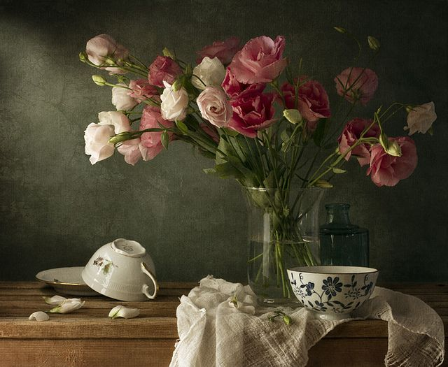 Fantastic still life photography by Anna Nemoy such incredible contrast they feel like paintings!