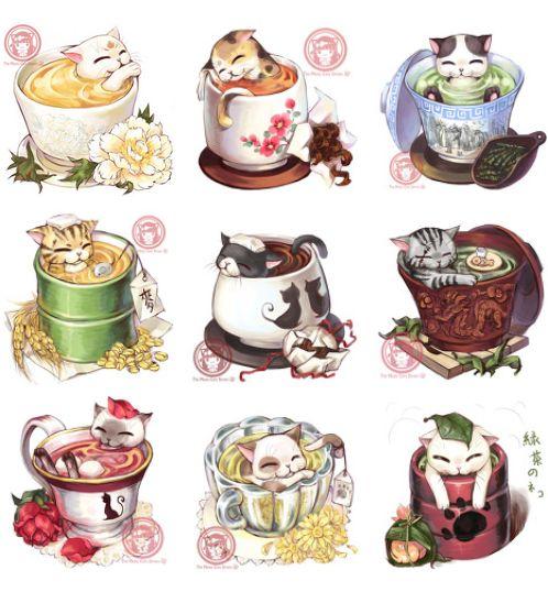 Cats bathing in tea