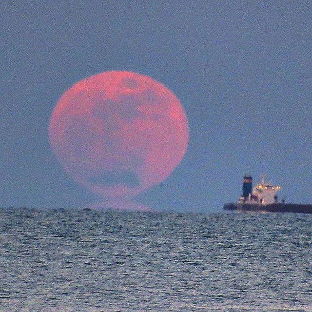 【masahiro_takagi】さんのInstagramをピンしています。 《今日は満月🌕  連投するので コメントoffします。  #満月 #月の出 #月 #海#タンカー#水平線#月明かり #赤く染まった月#あの人と見たい景色 #月の出 16:40#方位調べて待ってたら、目の前におっきなお月さまが…😳#方角バッチリ》