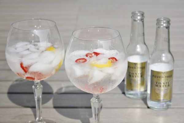 Gin Tonic Spicey