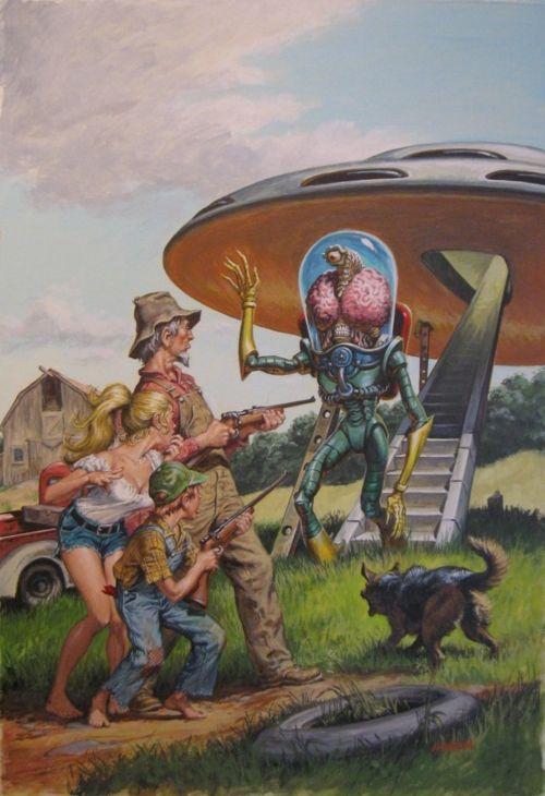 UFO: wrong landing