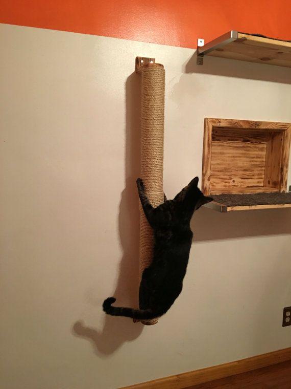 Grimpeur de chat / Cat Scratcher / rampe de chat