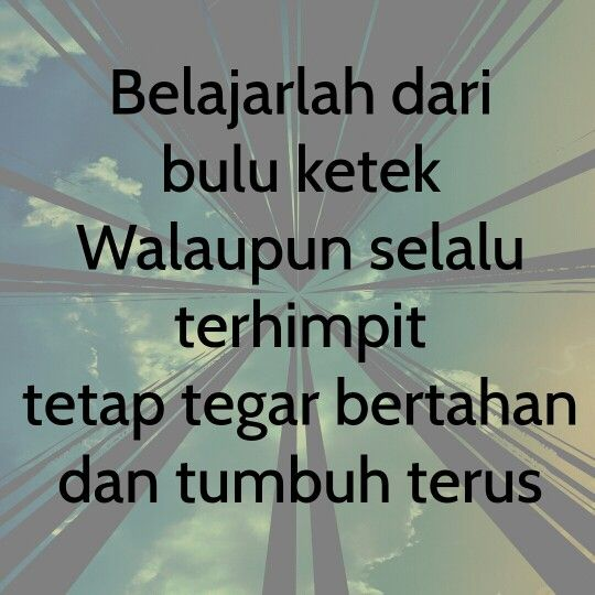 Quotes Lucu, DP BBM Lucu, Gokil Funny