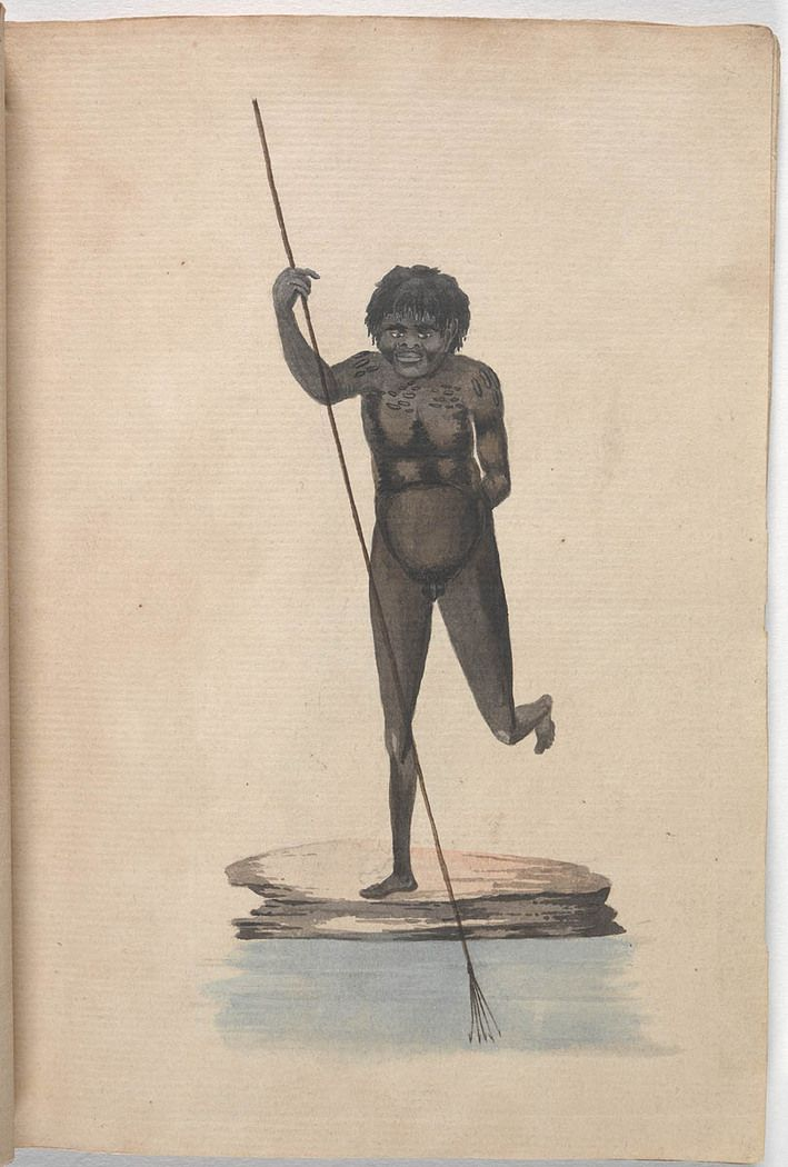 'Aboriginal man fishing with a five-pronged fishing spear', from the album Natives of New South Wales; drawn from life in Botany Bay, ca. 1805. Mitchell Library, State Library of New South Wales: http://www.acmssearch.sl.nsw.gov.au/search/itemDetailPaged.cgi?itemID=446648