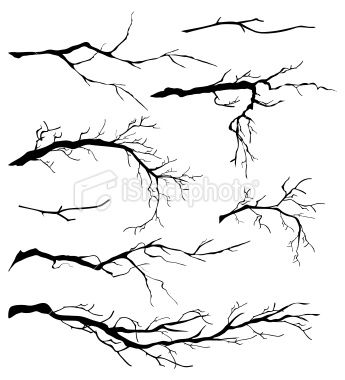 branches-have students begin with this then add strange things hanging from them.