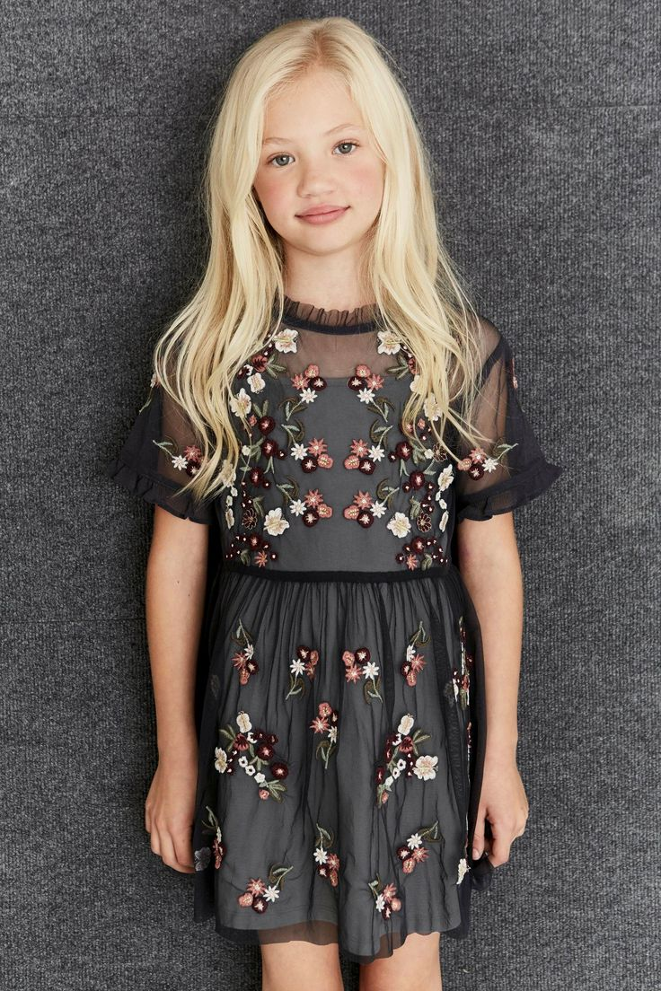 Next online party dresses - Buy Grey Embroidered Mesh Dress 3 16yrs From The Next Uk Online Shop