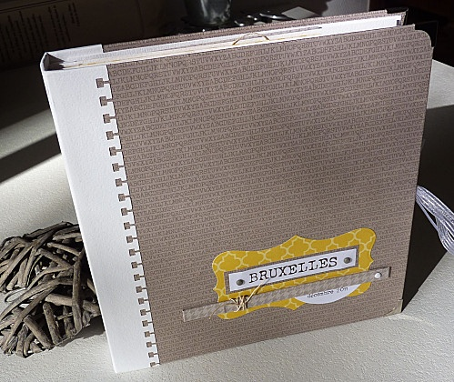clean and simple  craft book about bruxelles