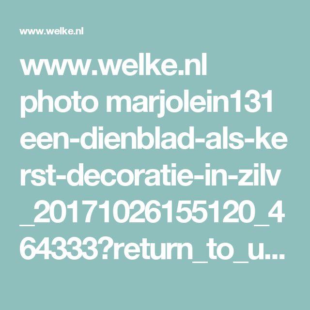 www.welke.nl photo marjolein131 een-dienblad-als-kerst-decoratie-in-zilv_20171026155120_464333?return_to_url=%2Fphoto%2FSusanneha%2Ftakken-bedekken-met-lijm-In-glitters-steentjes-rollen-en-laten-drogen.1379707983