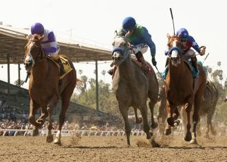 53 best Horse Racing - Santa Anita images on Pinterest | Horse ...
