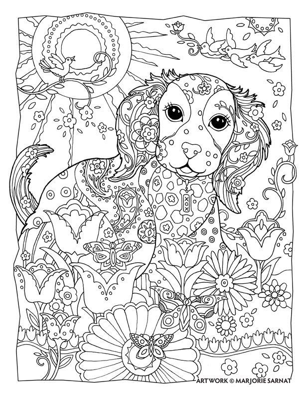 Dog Cat and Butterfly ~ Pampered Pets Adult Coloring Book by - best of coloring pages of littlest pet shop dogs
