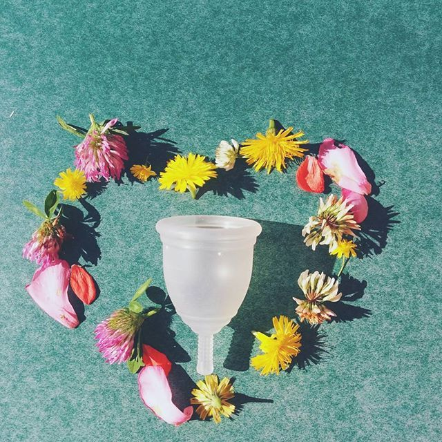 How to Recycle a Menstrual Cup                                                                                                                                                                                 More