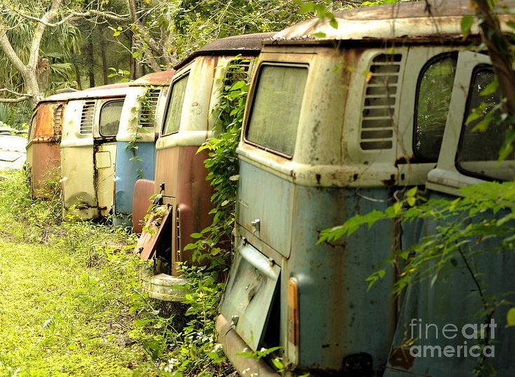 end of the line for the vw bus nancy dell 39 olio buses and the o 39 jays. Black Bedroom Furniture Sets. Home Design Ideas