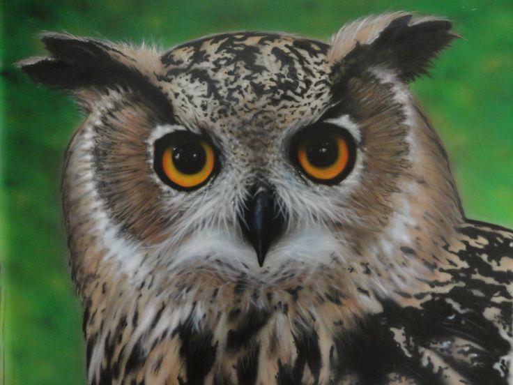 #airbrush #PhotoRealism #owl acrylics.