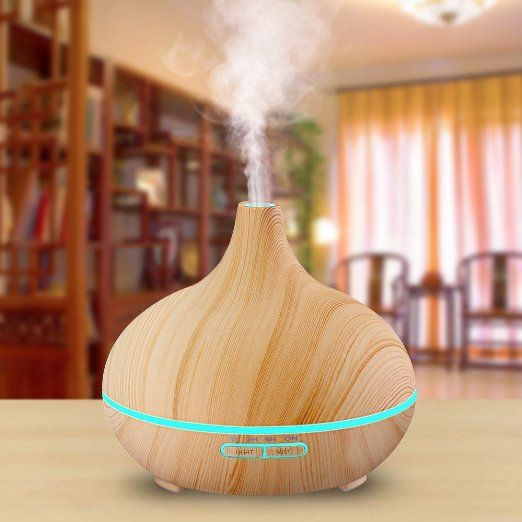 Humidifier for winter