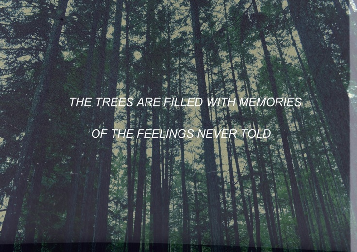 the paper kites | Tumblr