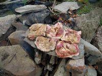 blog de bucătar: Friptură de porc pe piatră de râu!