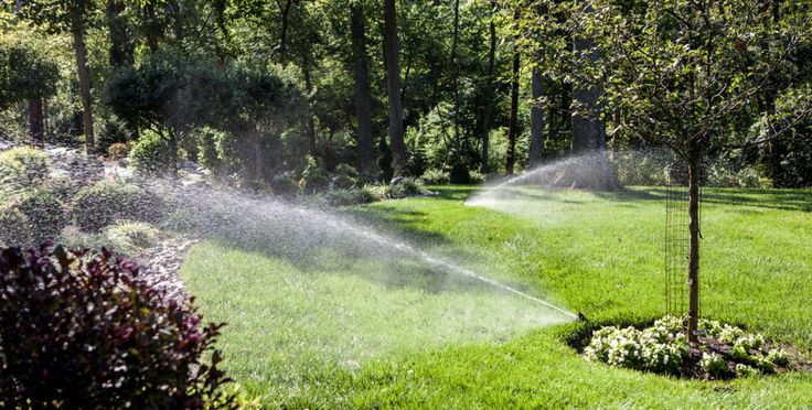 Did you know that an irrigation system can save you money on your water bill?  Traditional sprinklers attached to a hose are often forgotten, and tend to over saturate the ground.  Irrigation systems make better use of your water, releasing a specific volume exactly where and when you need it.